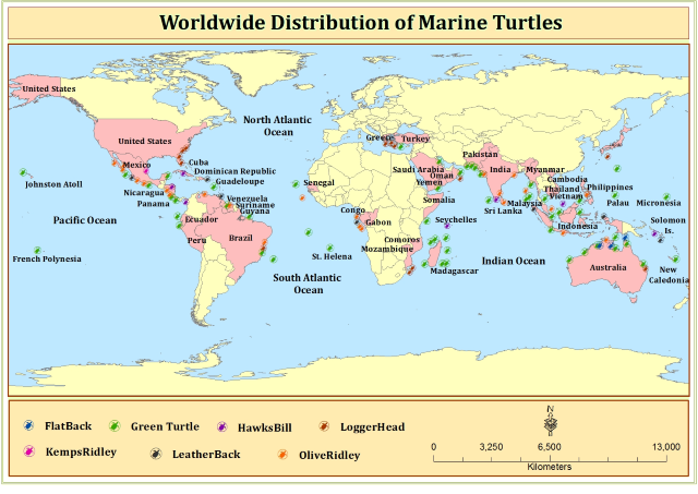 'Worldwide Distribution of Marine Turtles' by Dr. Farheen Khanum